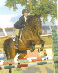 Jumper_horse_for_sale_-_Maria_jumping